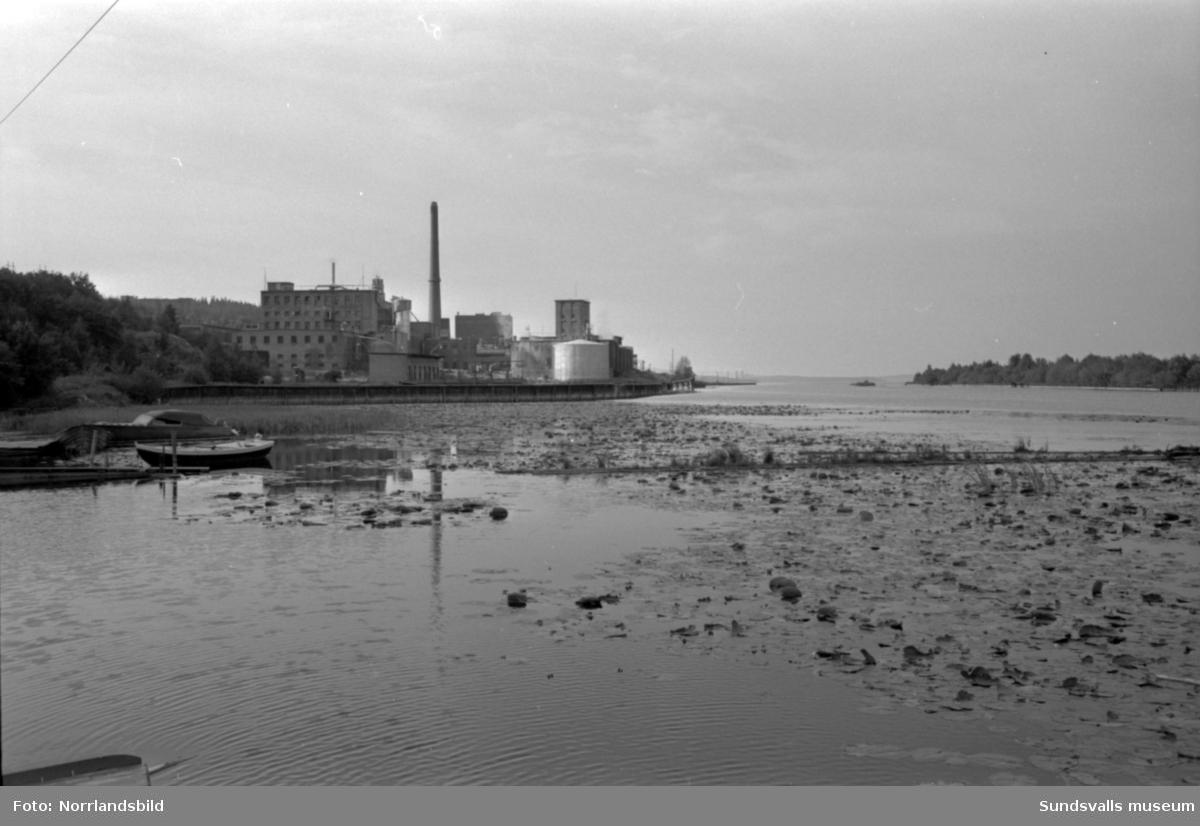 Föroreningar vid Svartviksfabriken.