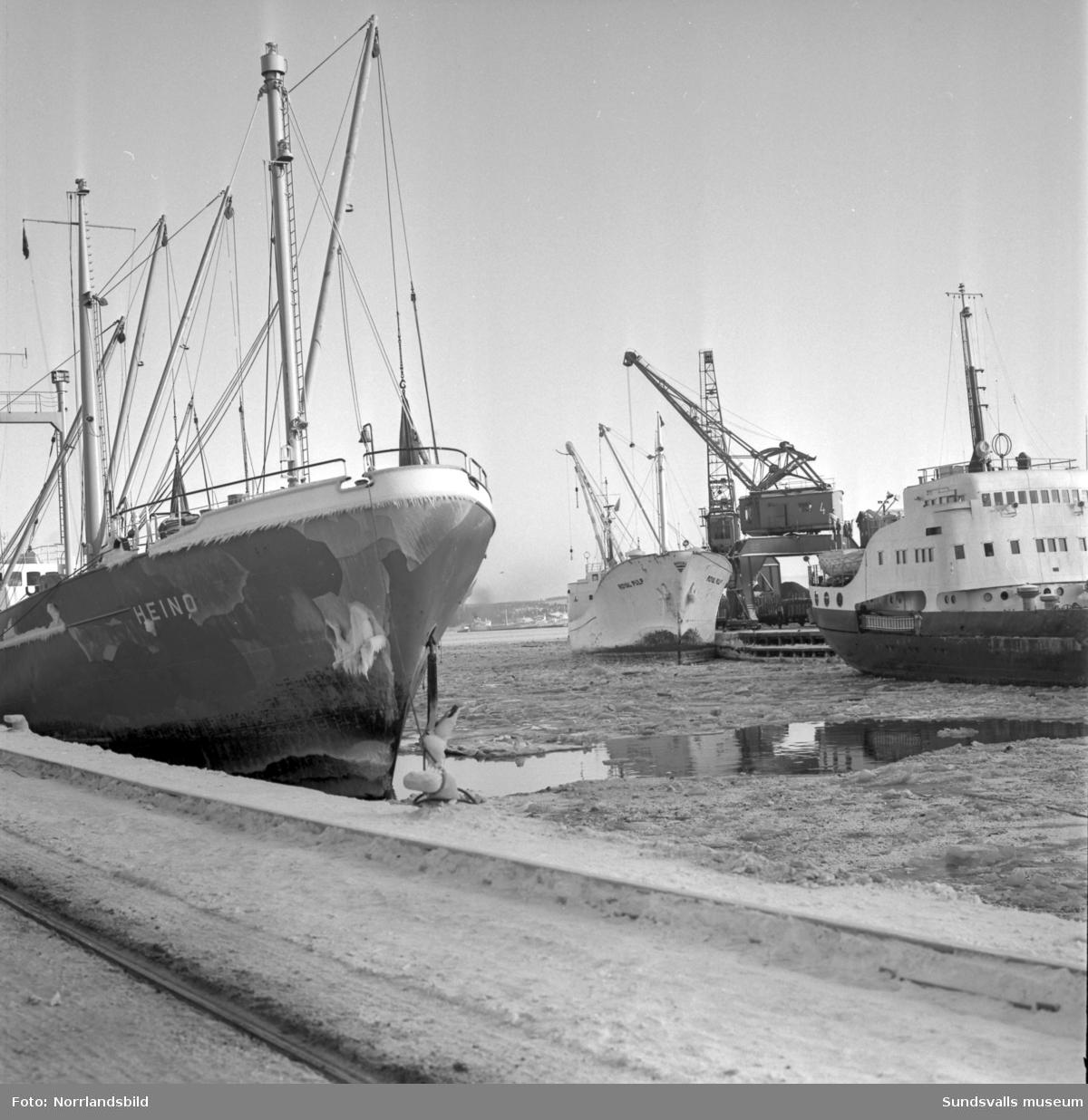 Isiga båtar i januarikylan i Sundsvalls hamn. Hilda Wesch, Heino.