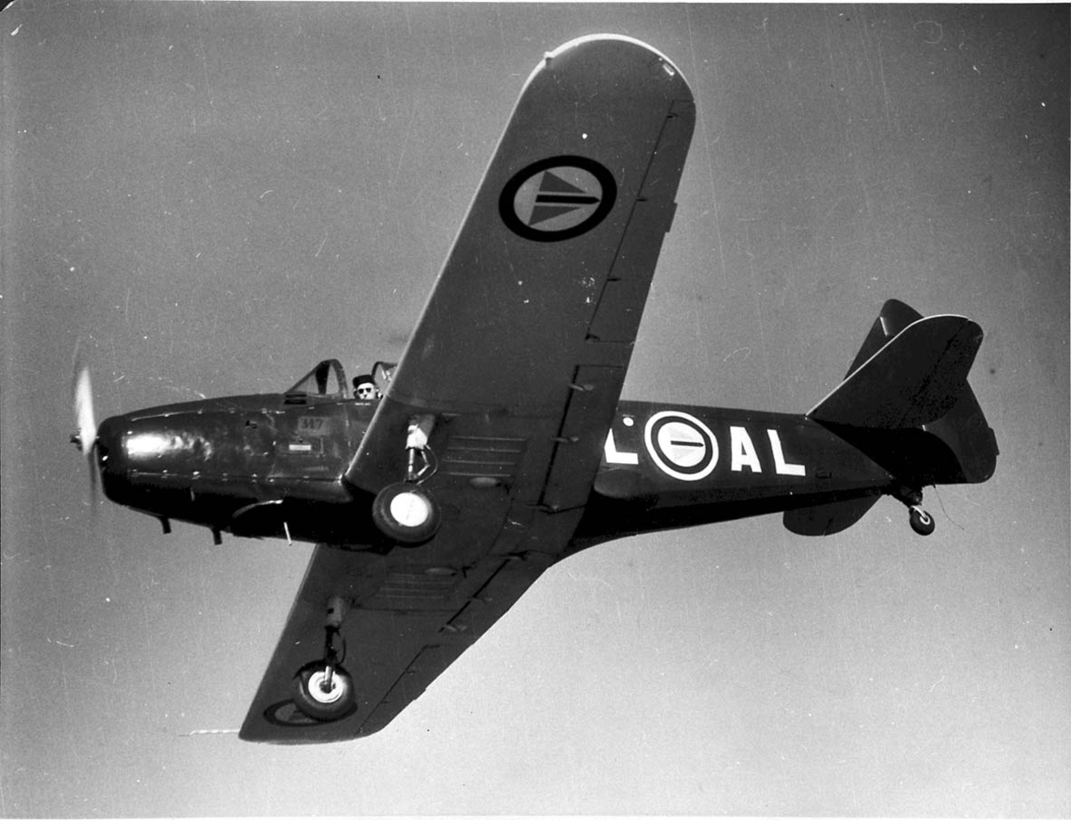 Luftfoto. 1 fly i lufta Fairchild Cornell M-62A L-AL fra RNoAF.