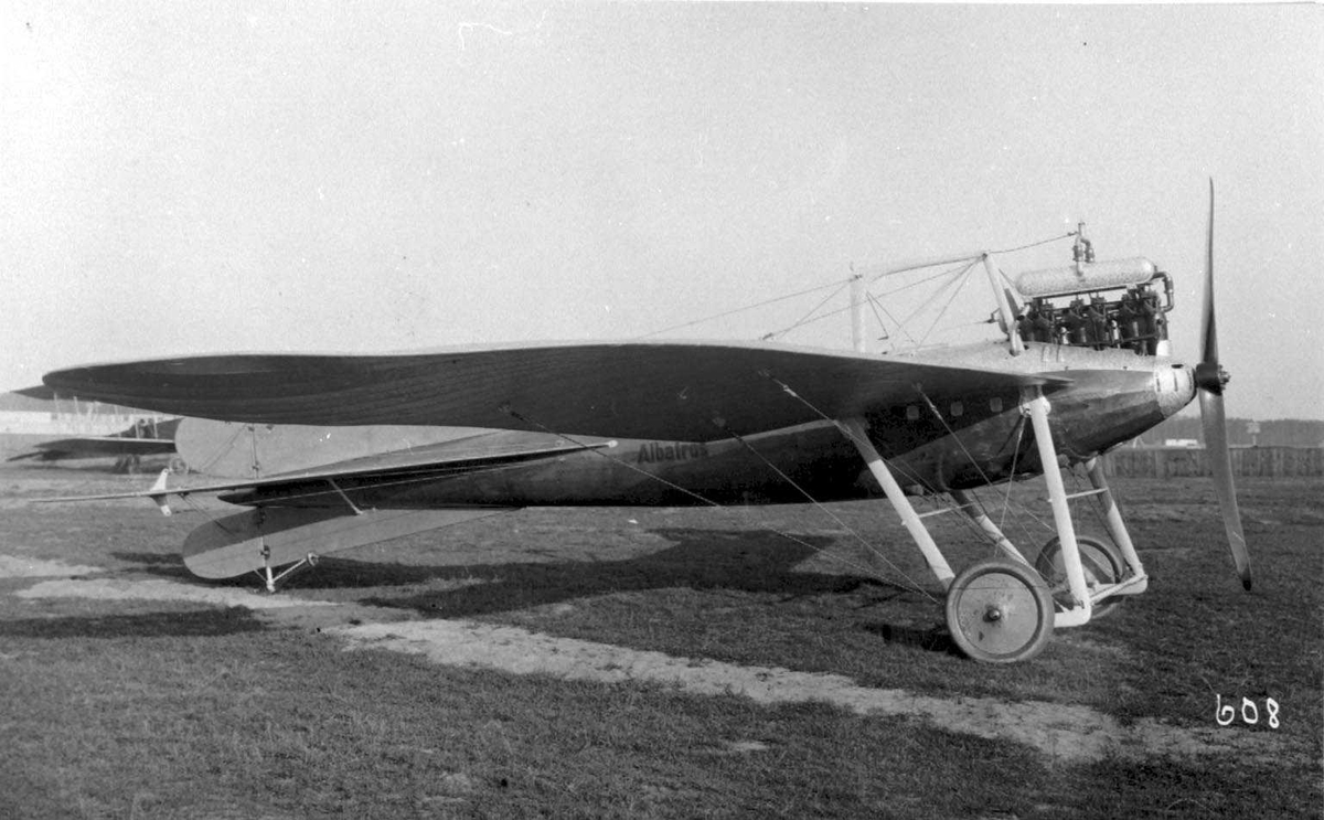 Ett fly på bakken, Albatros