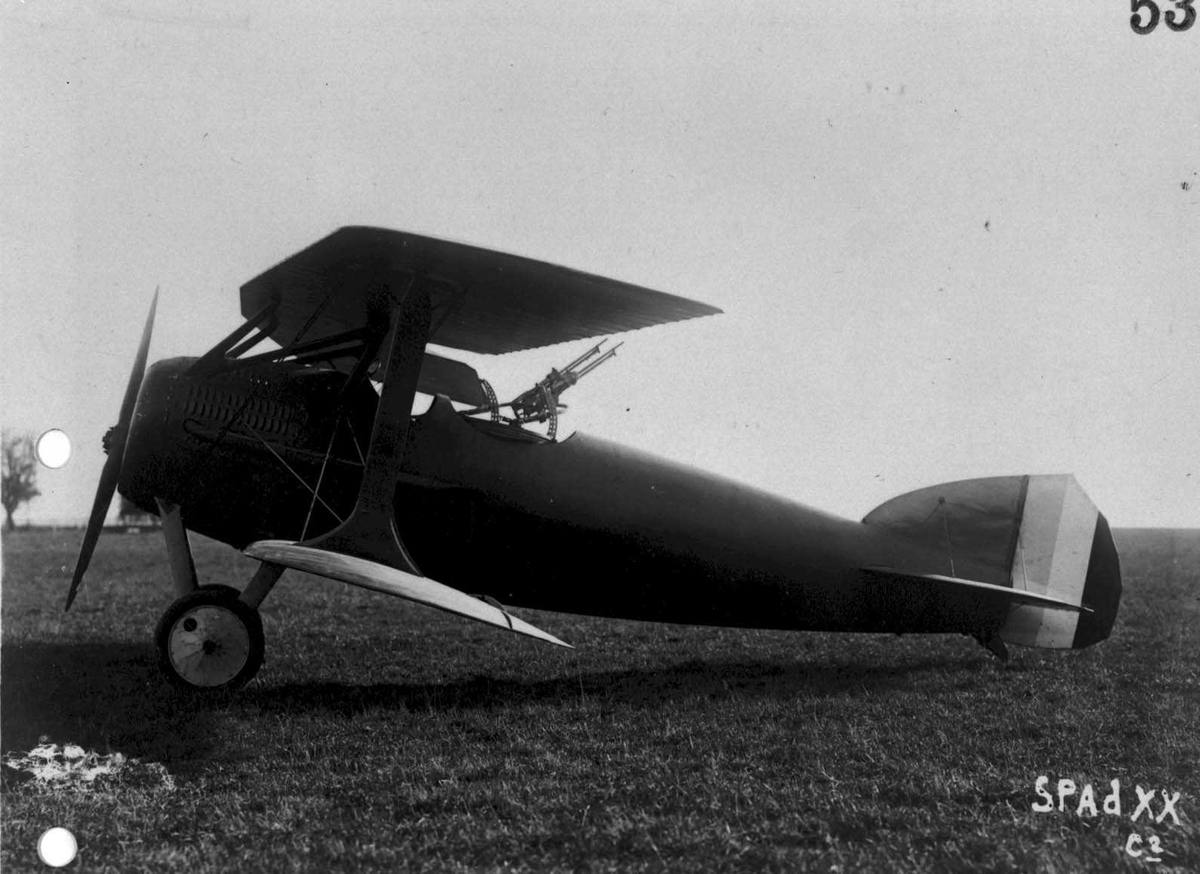Ett fly på bakken.