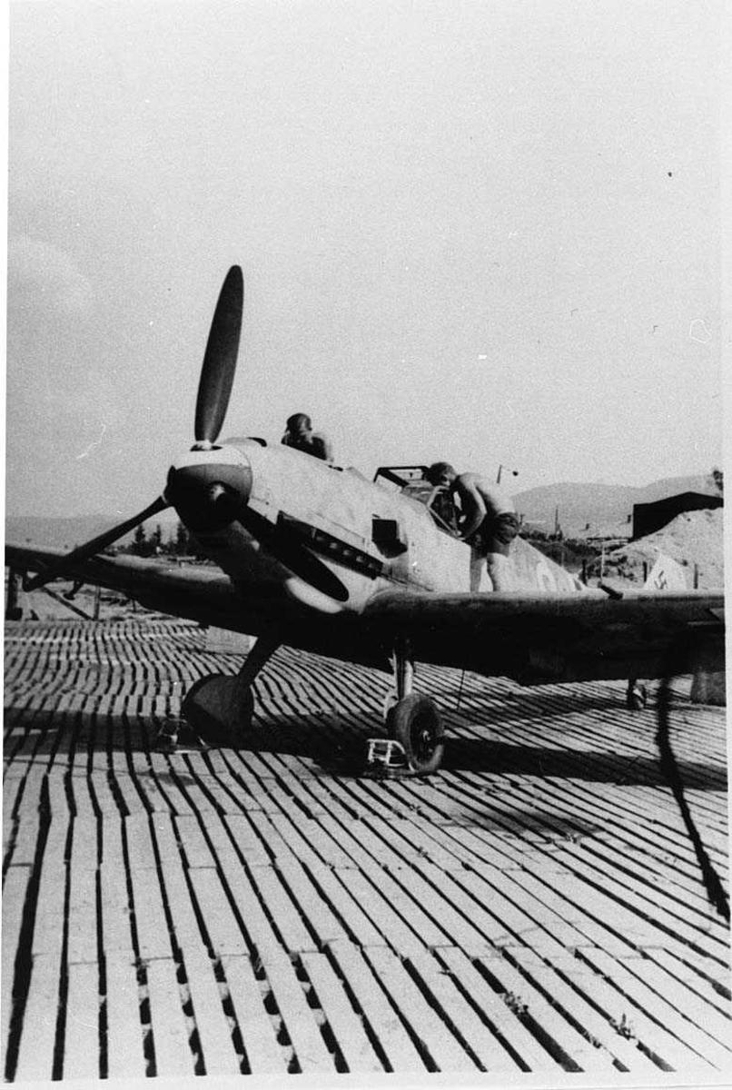 Lufthavn. tysk militert fly på bakken Bf109