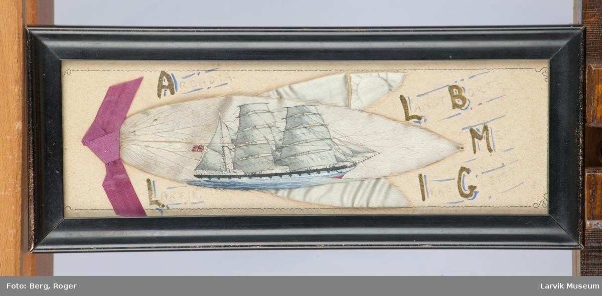 Skutebilde Arcadia Bark av Larvik