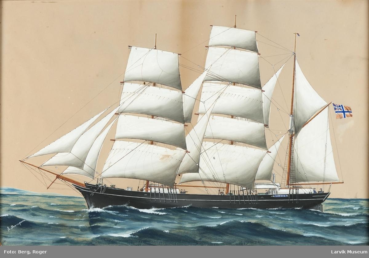Bark Sophie av Larvik