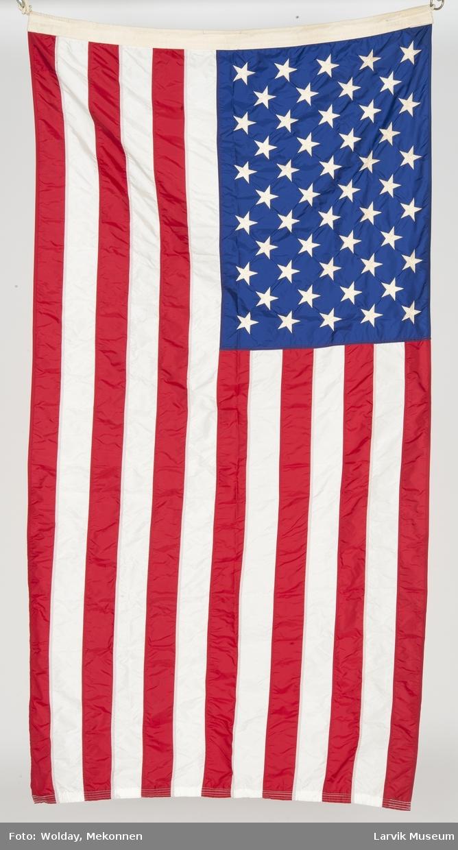 USA's nasjonalflagg m. line
