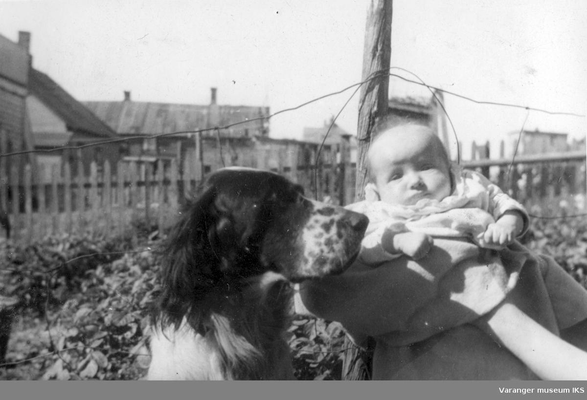 Utendørs portrett av Riestofamiliens hund Jerv og babyen Friedel (Mizda). Friedel var sønn av Klara Riesto og Stefan Mizda som giftet seg i 1945 og bosatte seg i Østerrike. Bildet er tatt i Vadsø i tiden før storbombingen av Vadsø by, juli/august 1944. Friedel ble født i mai 1944.