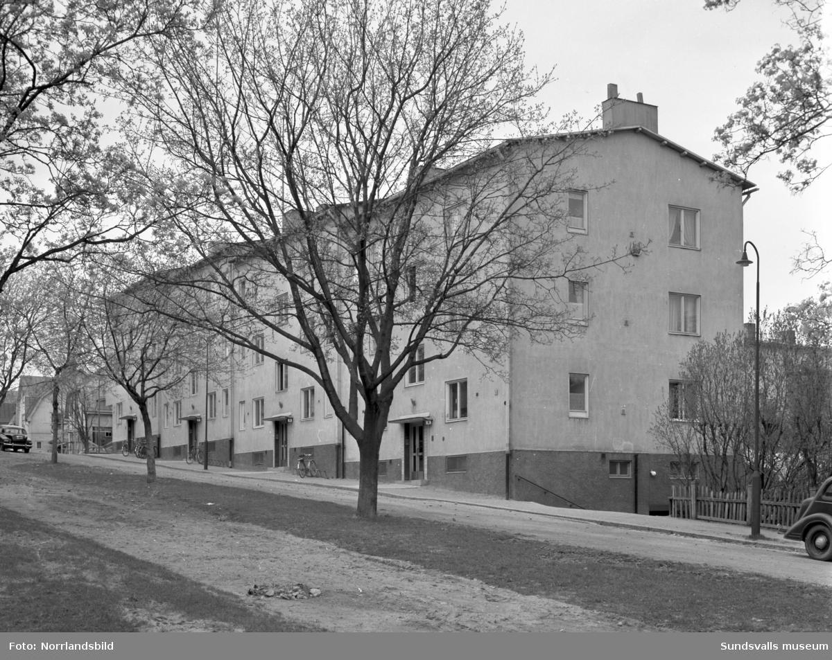 Flerbostadshus vid Västra Allén.