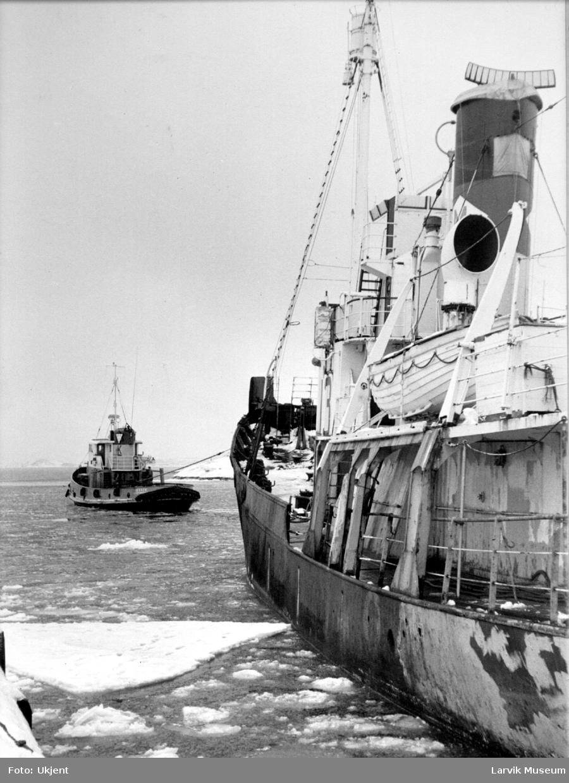 "fartøy, hvalbåt, ""Pol XIII"""