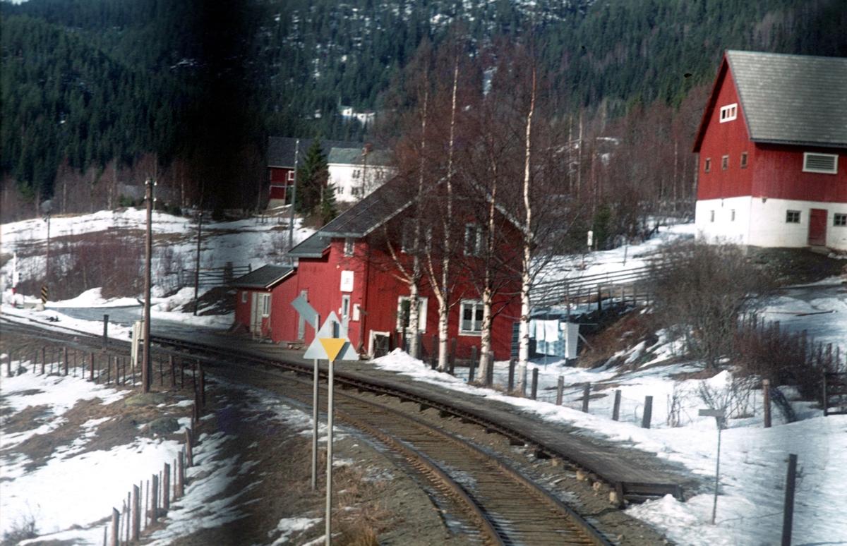 Tog til Fagernes kjører inn til Bjørgo.