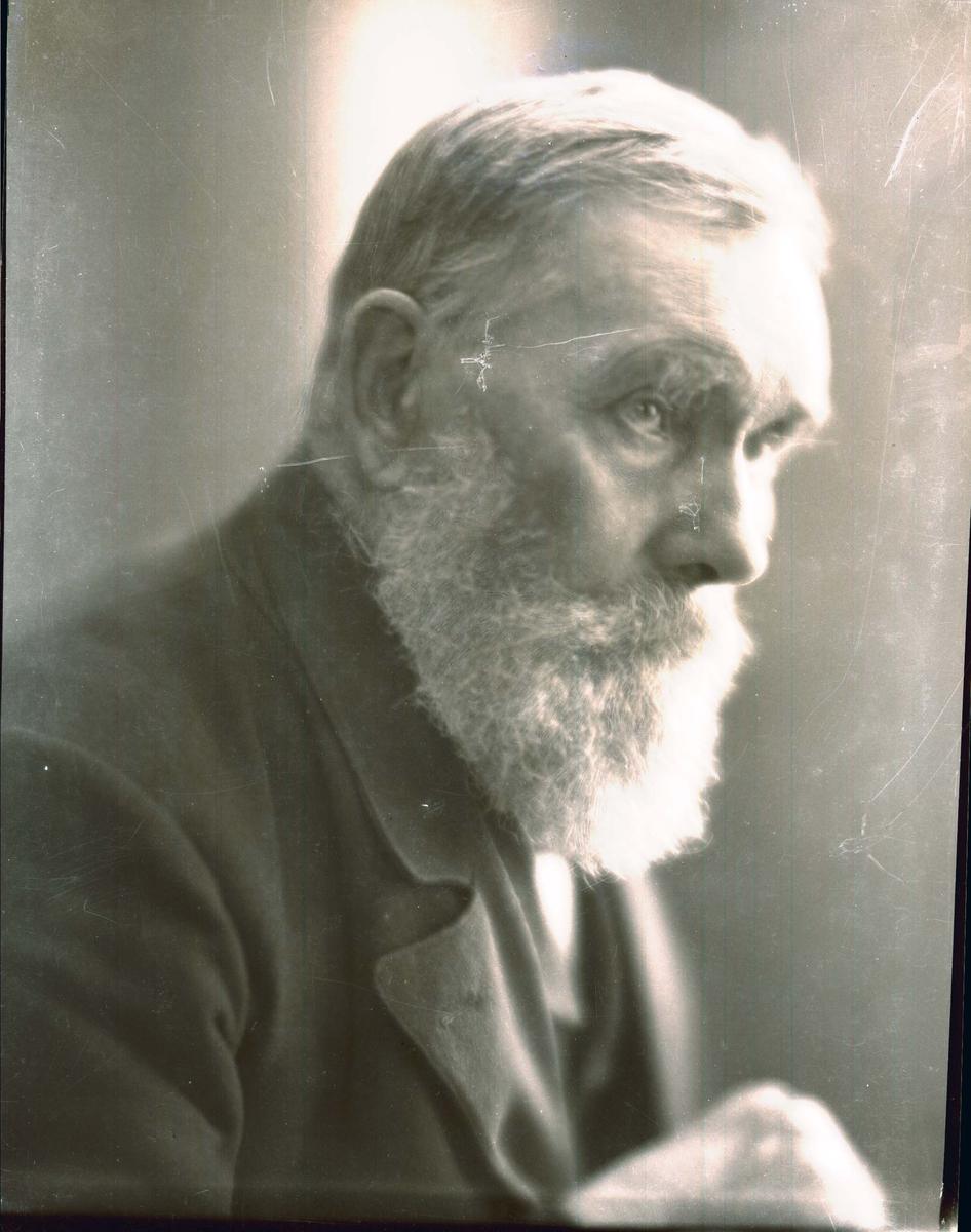 Portrett - Eldre mann.