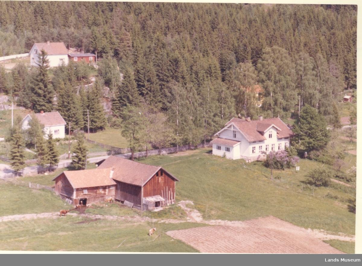 Flyfoto Fridheim