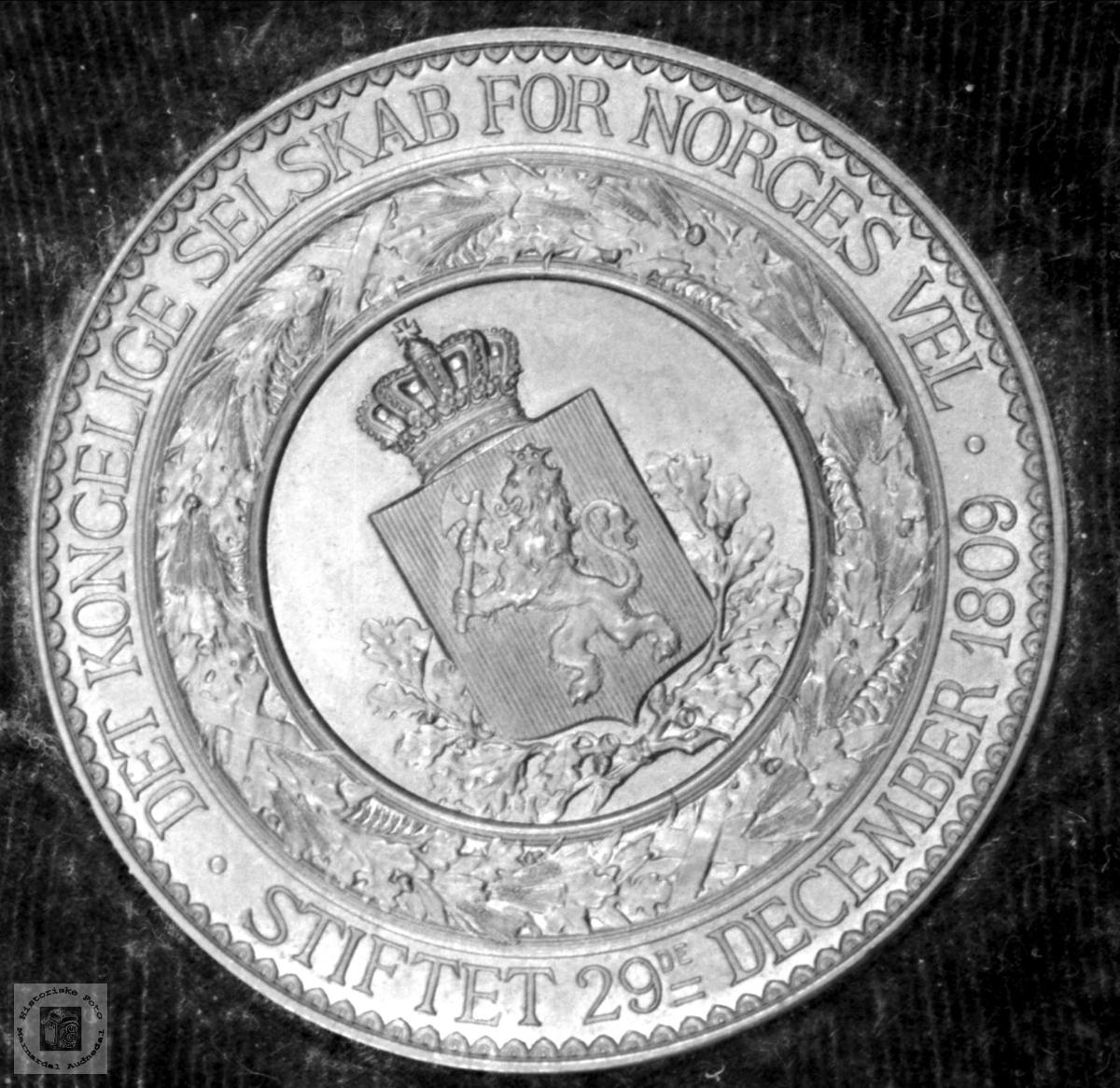 Medalje fra Norges Vel