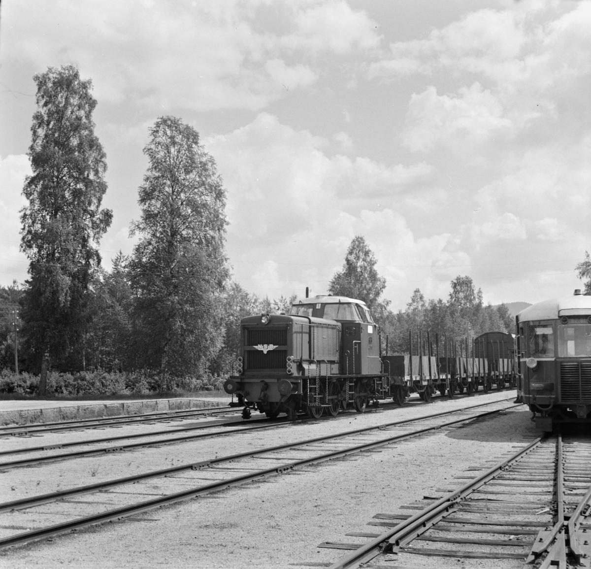 Godstog på Treungen stasjon.