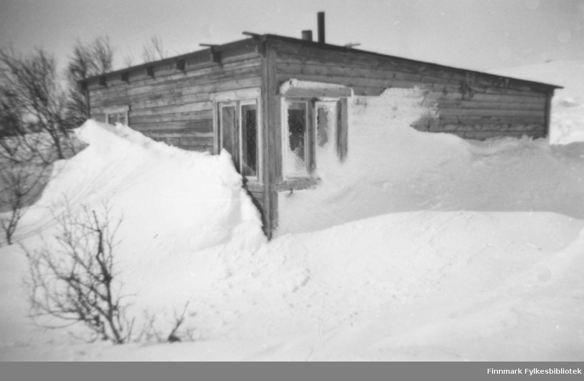 Hytte om vinteren, snøskavlene har trukket langt oppover veggene. Bildet kan være tatt i Skallelv