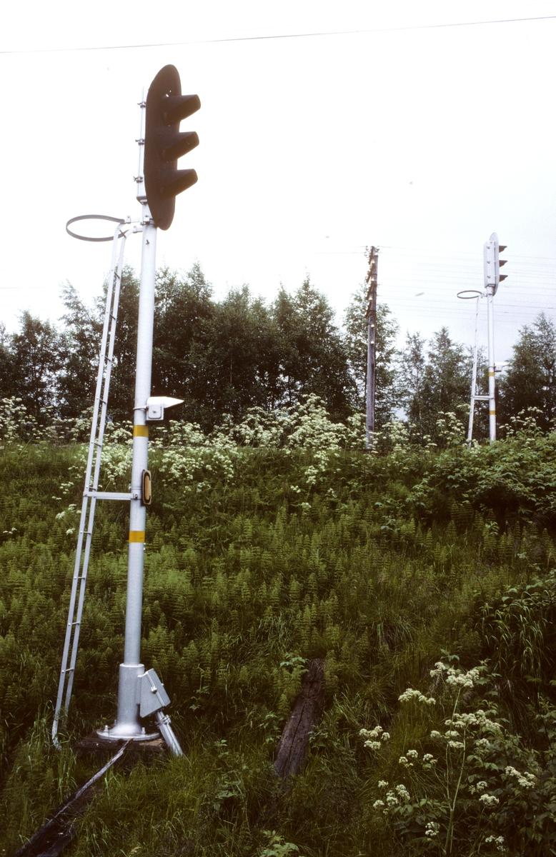 Innkjørhovedsignal C og A for henholdsvis Namsosbanen og Nordlandsbanen på Grong stasjon. Hovedsignalene er utstyrt med hjelpesignal, som med batteridrift kunne nyttes ved strømstans eller feil på signalanlegget. Grong hadde såkalt enkelt sikringsanlegg.
