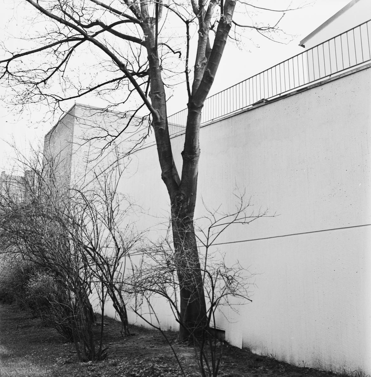 Övrigt: Foto datum: 4/5 1965 Byggnader och kranar Parkeringsplats bakom kungshuset