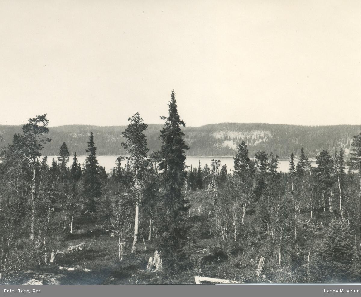 Foto Akksjøen set fra syd