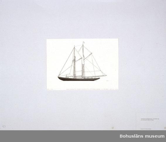 Montering/ram: Passepartout av tunn grå kartong; 55 x 66 cm, Amerikansk bankfiskeskonare, knockabout typ, utan klyvarbom, Ethel B Penny. Övrig historik se UM72.26.001.