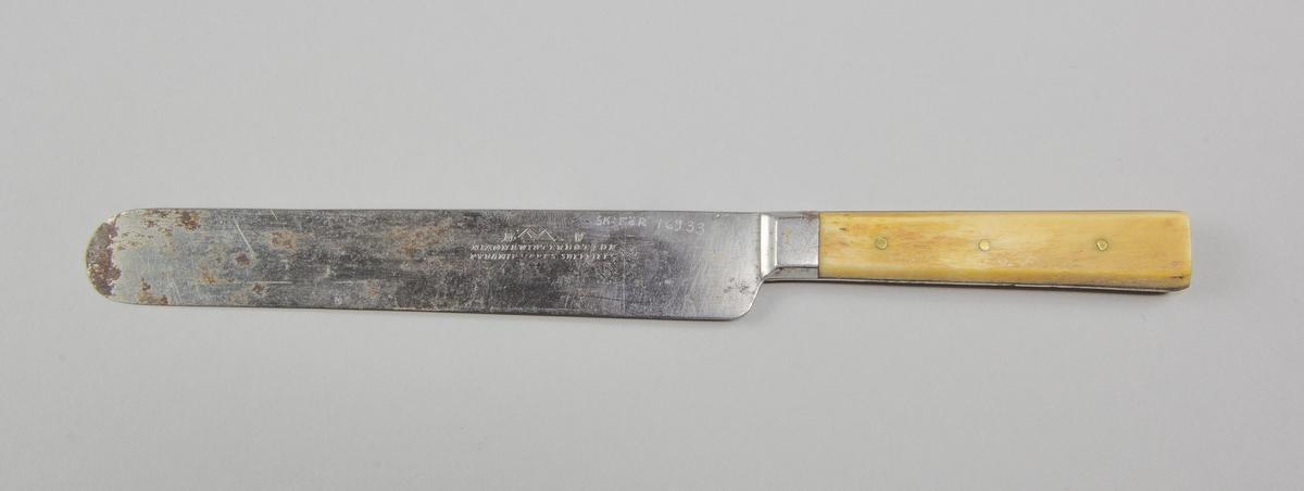 Bordskniv av stål och horn. Blad och tånge gjutet i stål. Handtag av obenhandlat horn, fastsatt med tre nitar av mässing. Rakt blad.