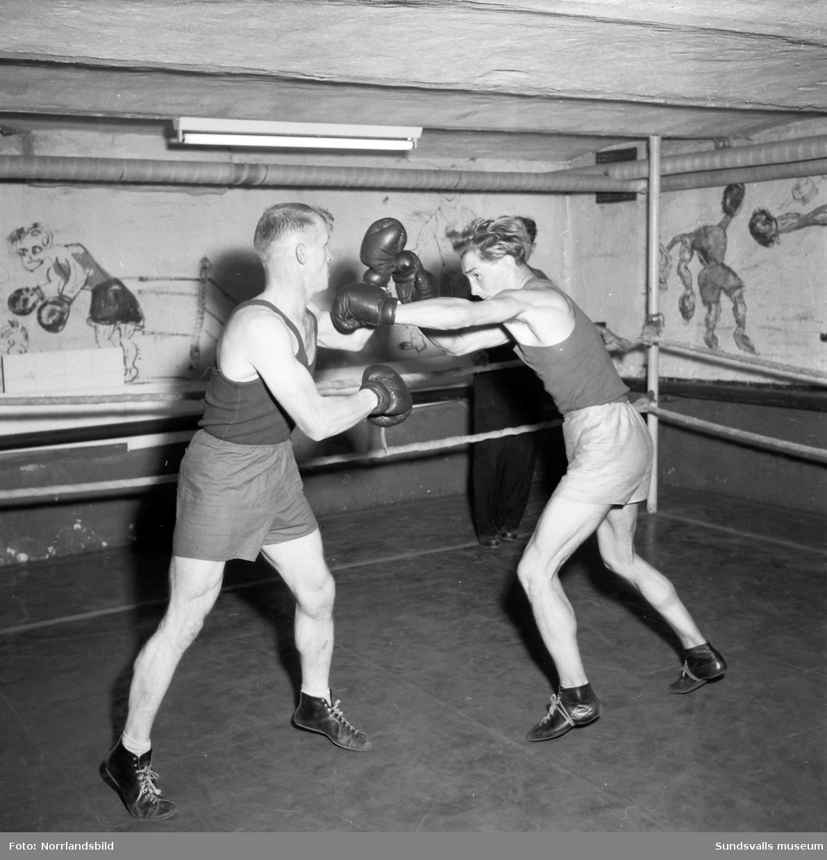Boxning i en källarlokal med boxningsmålningar på väggarna.