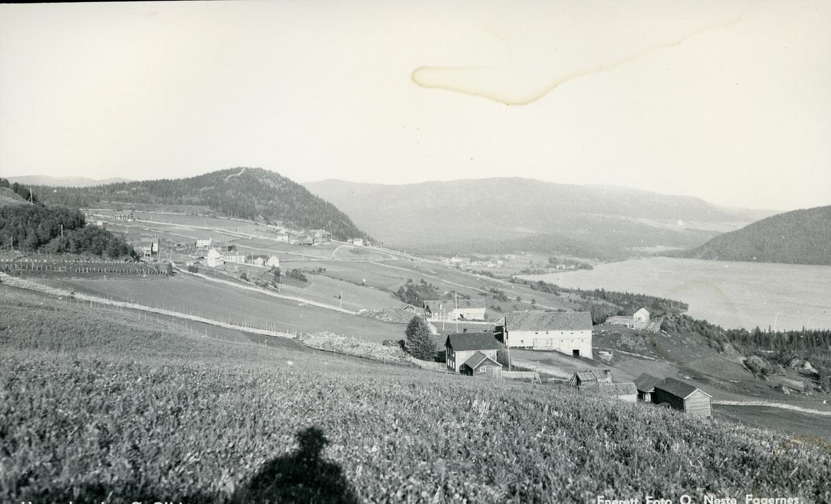 Utsikt over Heggebygda