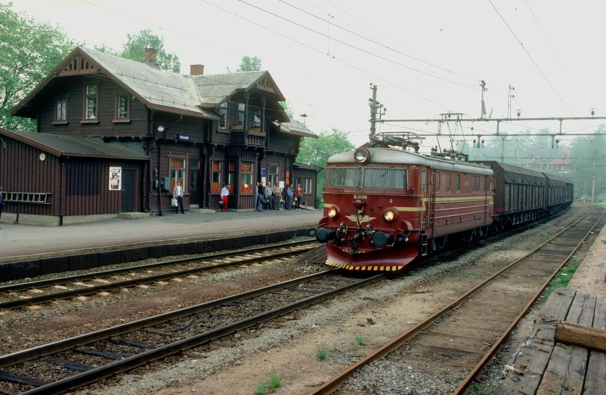 Godstog 5165, Alnabru - Roa, på Hakadal stasjon.