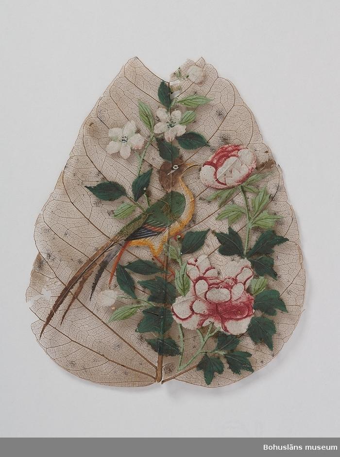 Ur handskrivna katalogen 1957-1958: Fågel med blommor målat på ett blad. Kina Mått: c:a 13 x 10 cm; målningen är gjord på bladets nerver. Något trasigt.