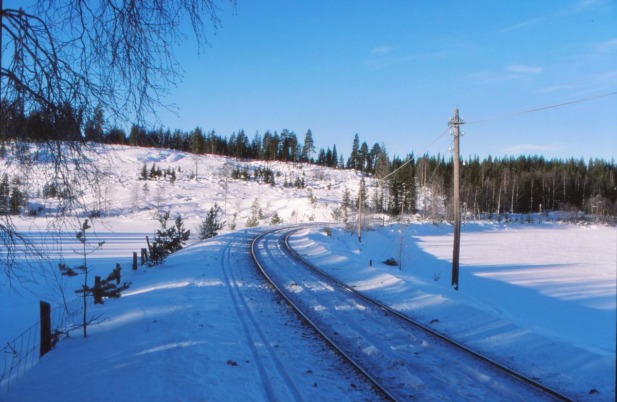 Parti fra Valdresbanen ved Trevatn.