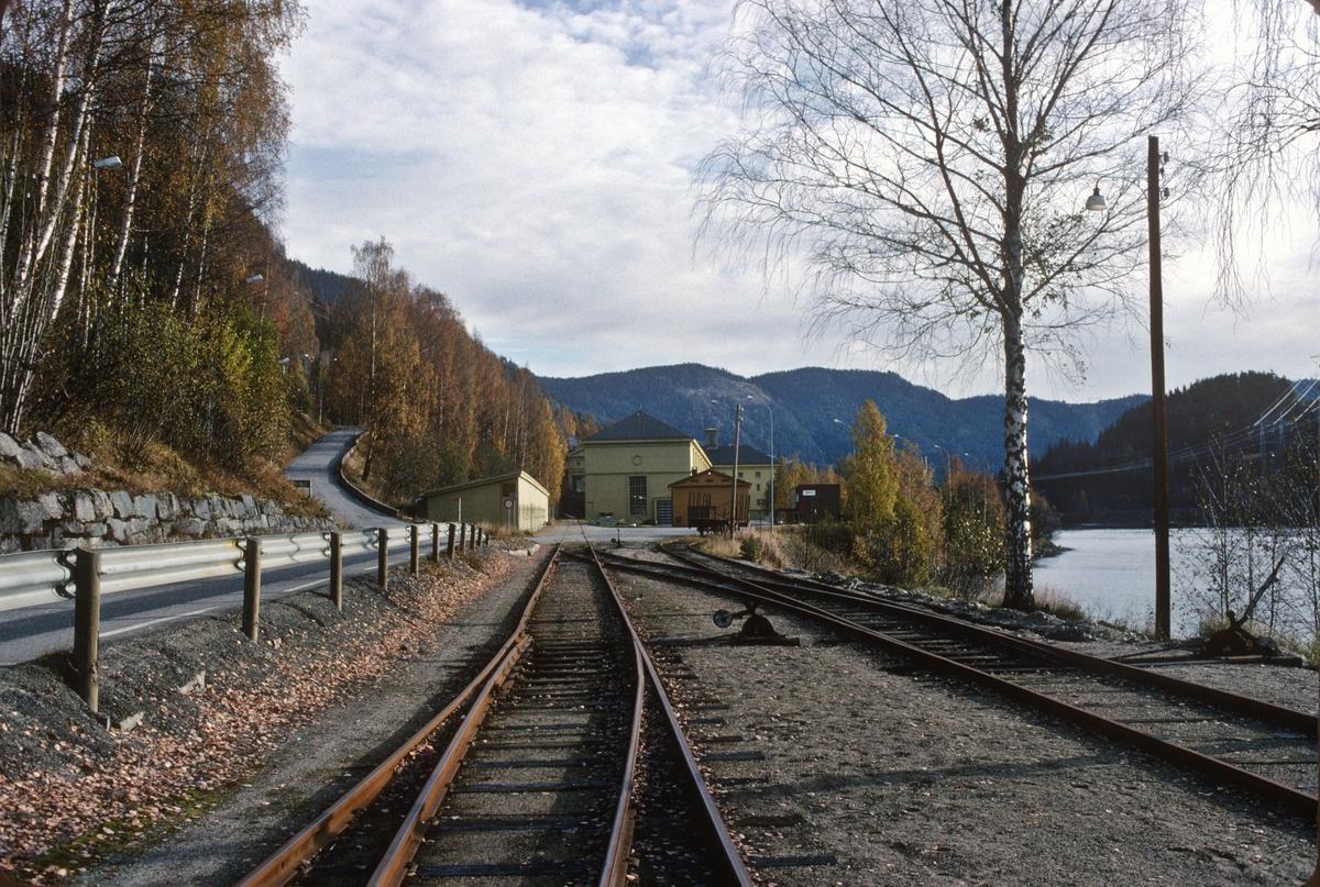 Rødberg stasjon. Spor til kraftverket.