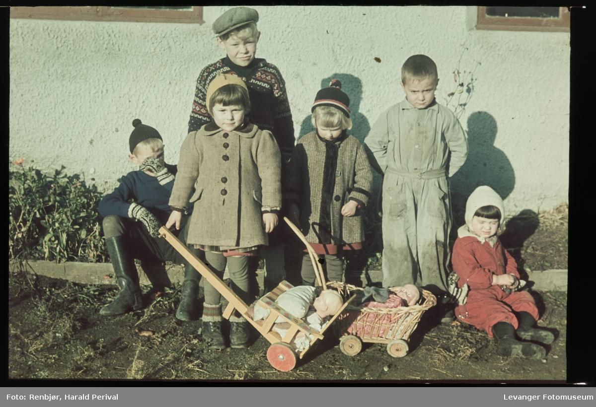 Barn i Halsanvegen med dukker og dukkevogner.