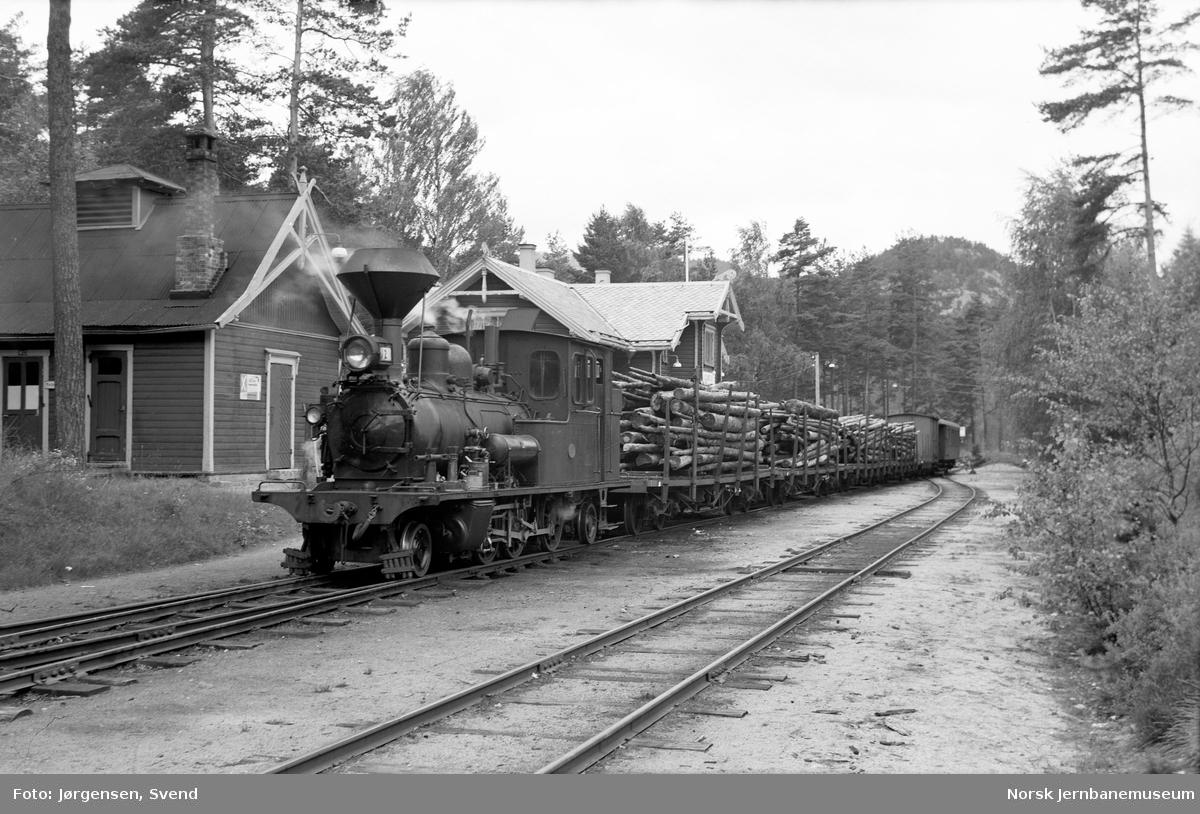 Damplokomotiv nr. 2 med godstog 5662 på Byglandsfjord stasjon