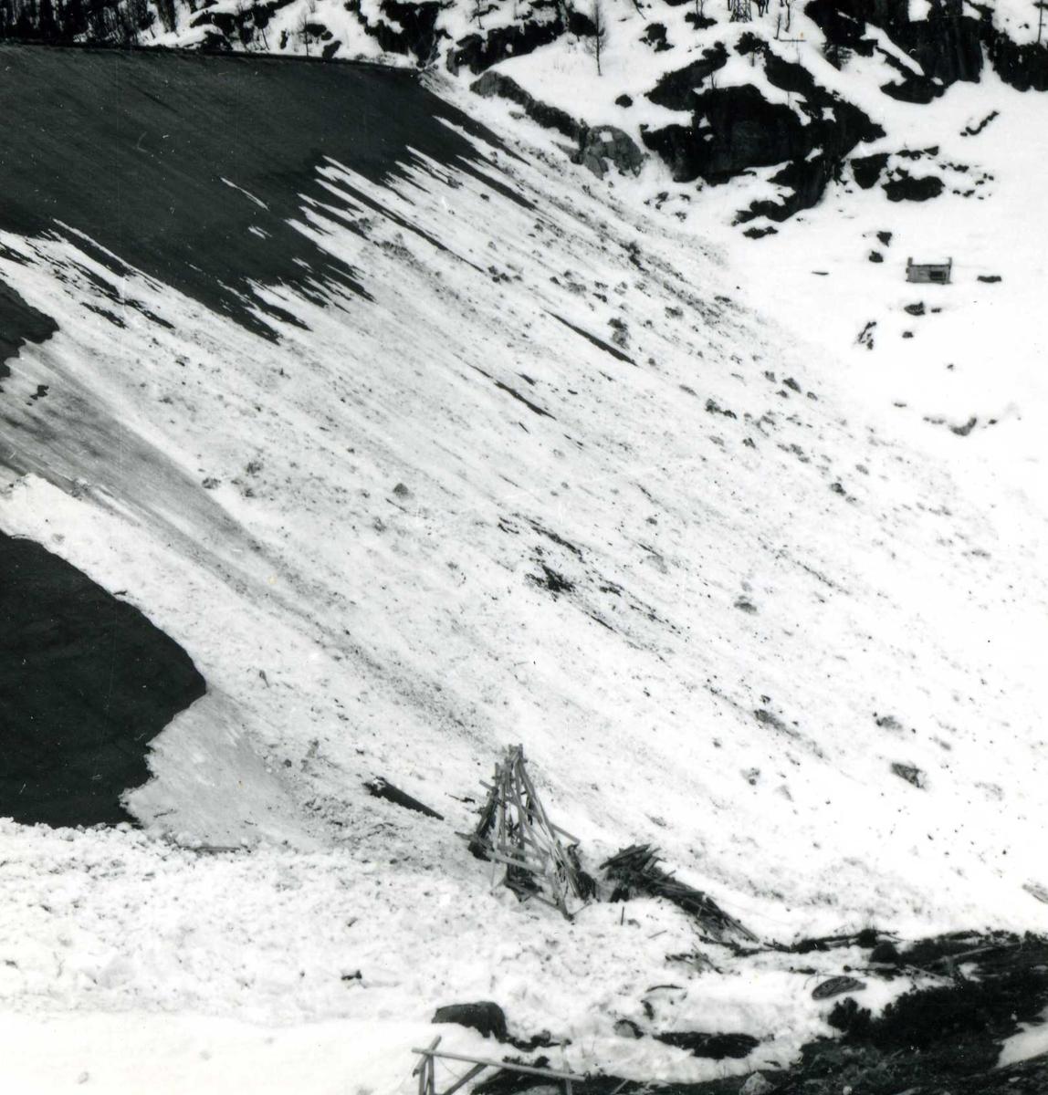 Venemo 194