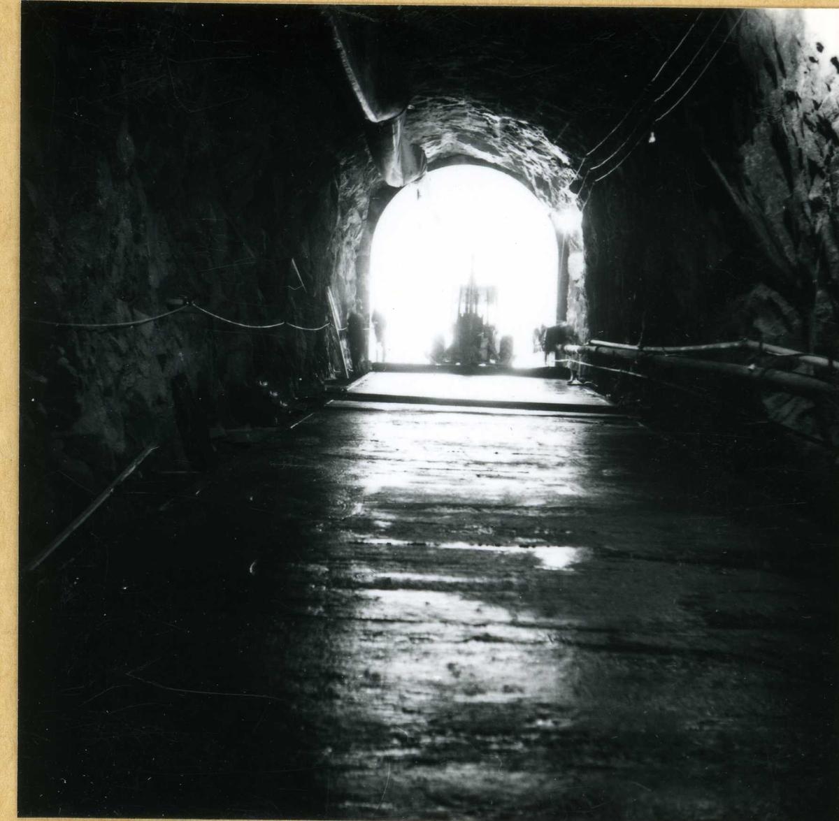 15.9.69   A-tunnell Byrte   219