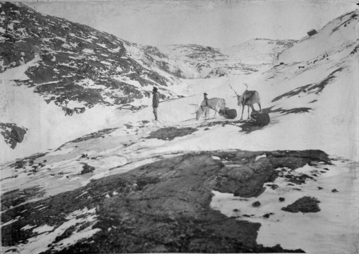 To kjørerein med pulk og vappuser i ulendt terreng mellom Grense Jakobselv og Jarfjord