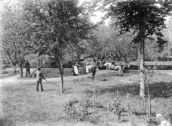 Lantgård, negativ 70:1947 18x24.
