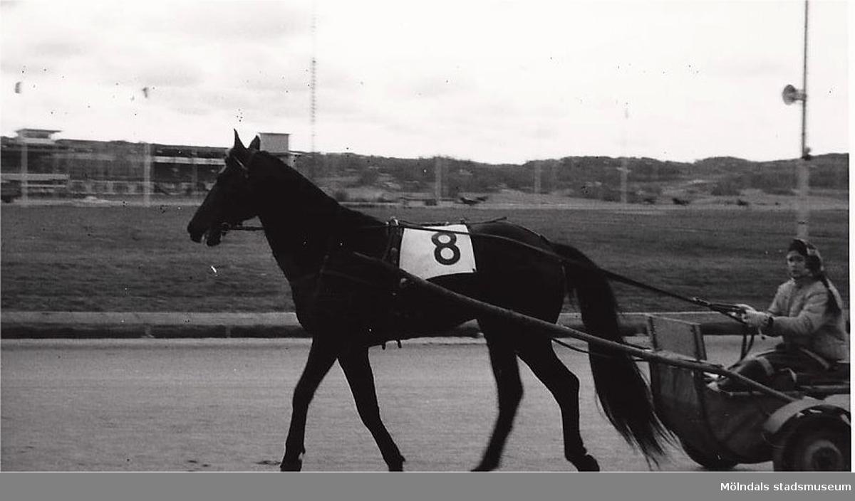 Liane Wendt & Red Orbit på Åby 1970.   Blandade bilder inslamlade i samband med dokumentation av Åby Stallbacke och Stallgårdarna 2015.