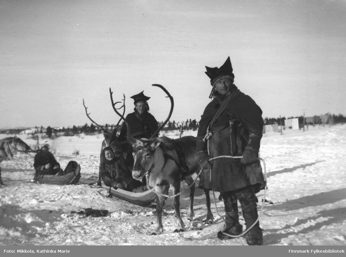 Klar til utferd med rein og pulk i Pakanajoki, 1936-1937. Det er umulig å se hvem som sitter i den bakerste pulken. Ingrid Mikkola sitter i pulken nærmest kamera, ved siden av henne Andreas Mikkola. Nærmest kamera står lille Jakob Hallonen