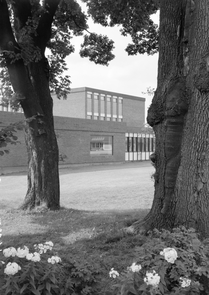 Arkitekturfoto av Skien Gymnas, nå Skien Videregående Skole.