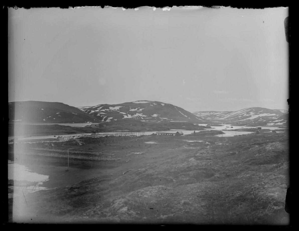Oversiktsbilde over Båtsfjord. Fiskehjeller full av tørrfisk og beitende sauer på forgrunnen fotografert fra langt avstand fra fjellet. Spredt bebyggelse langs fjordarm. Noen snøflekker på fjellene lengst bak på bildet.