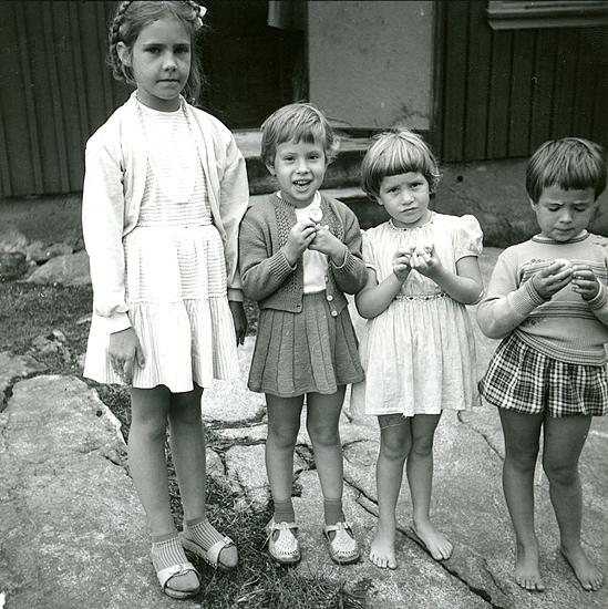Sommaren 1958. Vi äter sura äpplen. Från vänster: Inger Wetterlund sommargranne f.1949; Veronika i hemmastickad dress 5 år; Agneta Turesson f. 1953 åretruntboende granne; flicka som var hyrgranne.