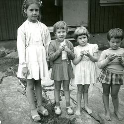 Sommaren 1958. Vi äter sura äpplen. Från vänster: Inger Wett