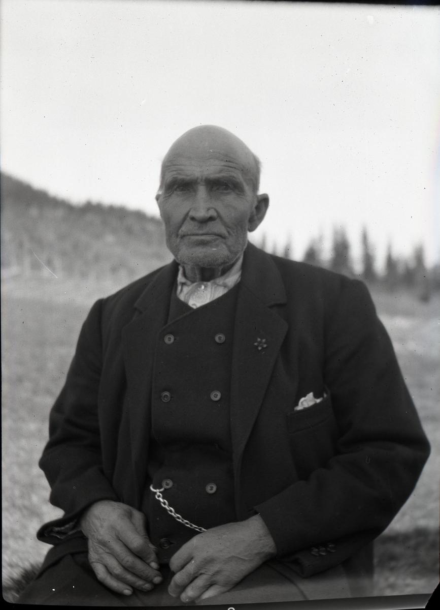 Portrett i halvfigur av eldre mann. Han er kledd i mørk dressjakke og mørk, dobbeltspent vest med lommeurlenke. Skjorte uten slips.