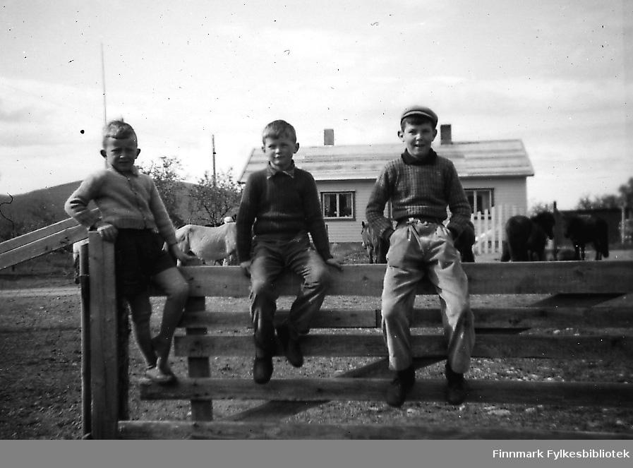 Tre gutter sitter på en gjerde en solig vårdag i Seida i 1956, huset til Persen i bakgrunnen. Barna fra venstre: Bjørn Ottar Betten, Maar og Einar Stangeland. Mellom gjerden og huset går flere hester. Bjørn Ottar er kled i knebukser og genser, de to andre i langbukser og genserer.