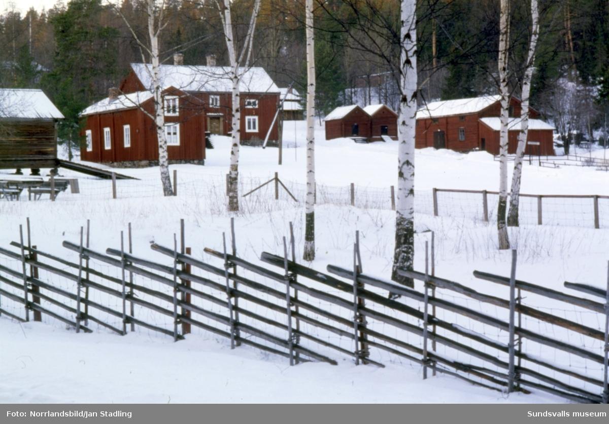 Vinterbild på Torpsgården, Norra berget, med en gärdsgård i förgrunden.