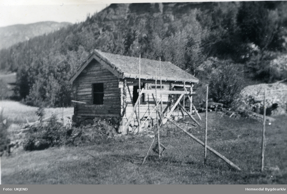 Bygging av hytte, henta frå Trøynåne ca 1952