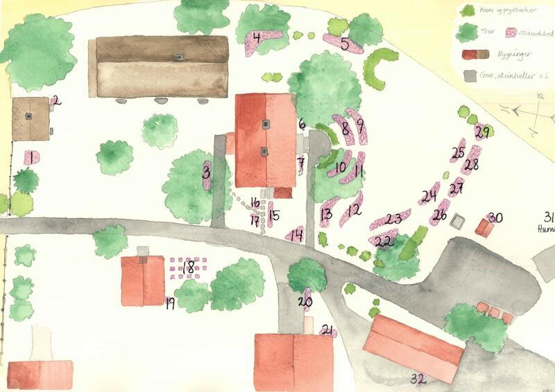 Oversikt over staudebed på Gamle Hvam. Foto/Photo