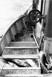 Fiskekasser ombord i Liljen.