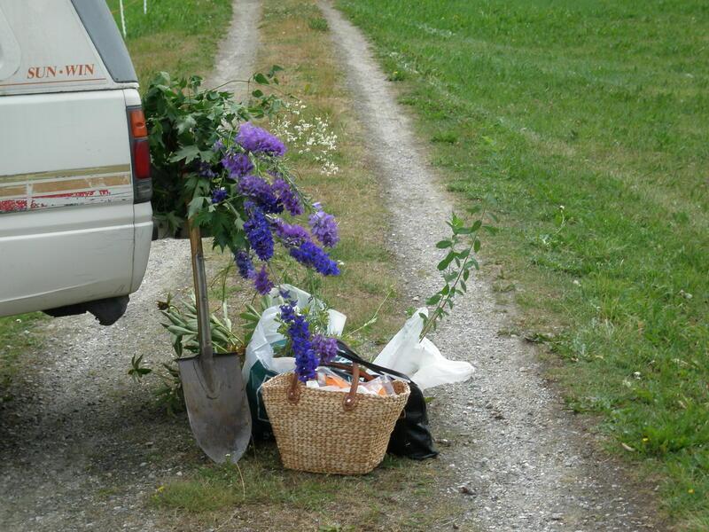 Innsamling Lesja 2008 (Foto/Photo)