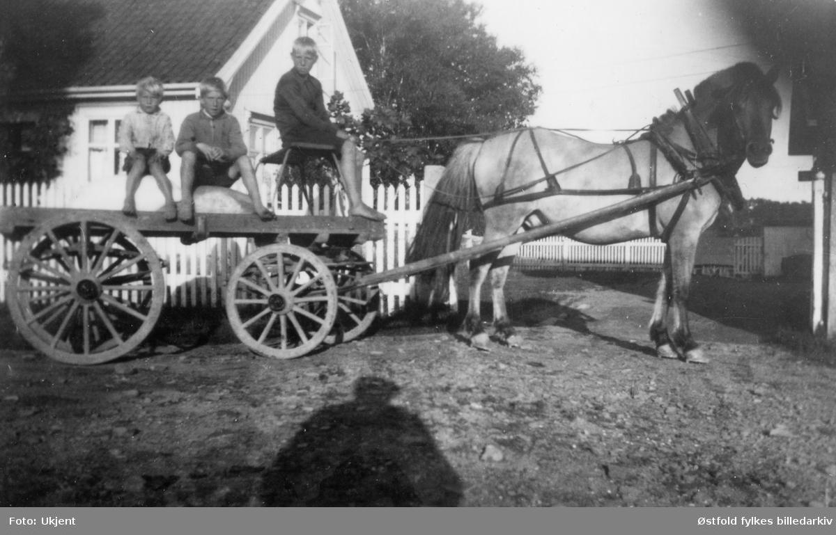 """Gutter med kjøpmann Rambergs hest og vogn, 1932 i Ravneveien 33, Evje i Rolvsøy. Fra venstre: Bjarne Engebretsen, Tidemann Martinsen og Edgar Olsen Fjellheim. Bjarne og Tidemann sitter på melsekkene, mens det er Edgar, 12 år, som er kusk. Kjøpmann Ramberg fikk daglig leveranser av melk og brød med """"Trippebåten"""" som klom fra Sellebakk. Guttene syntes det var stor stas å få kjøre med hest og vogn forbi verkene ned til Evje-brygga for å hente varene."""