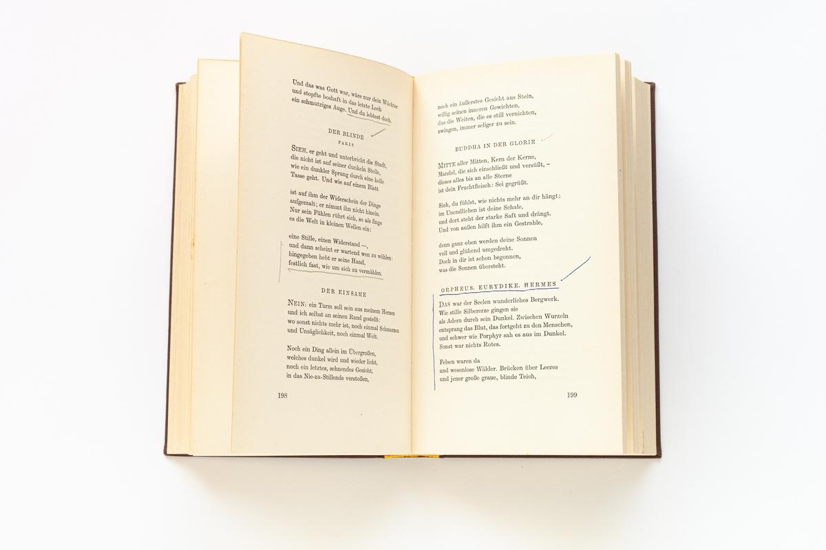 Rainer Maria Rilke: Ausgewählte Werke, Band 1